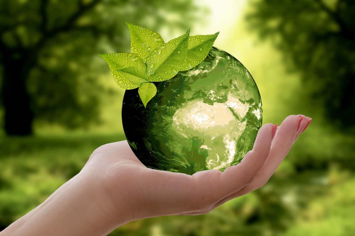 Bioenergy, a Sustainable Solution